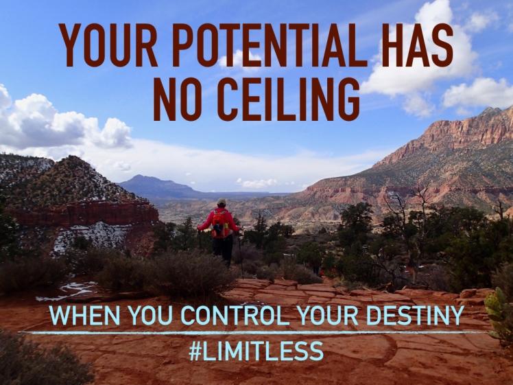 #limitless #Gogettheworld