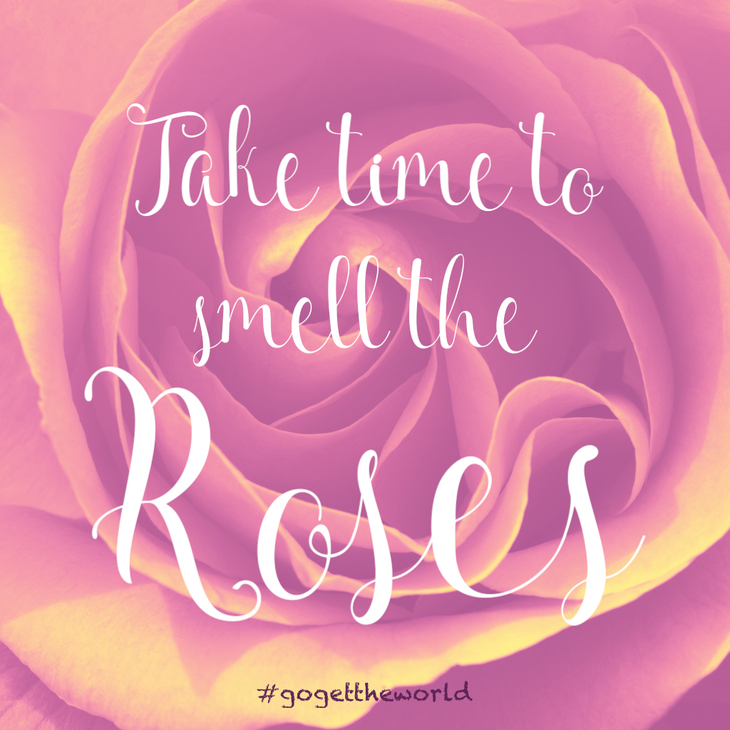 "A picture of a rose below the phrase ""Take time to smell the roses."" #gogettheworld"
